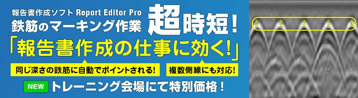 Report Editor Pro 有償オプション